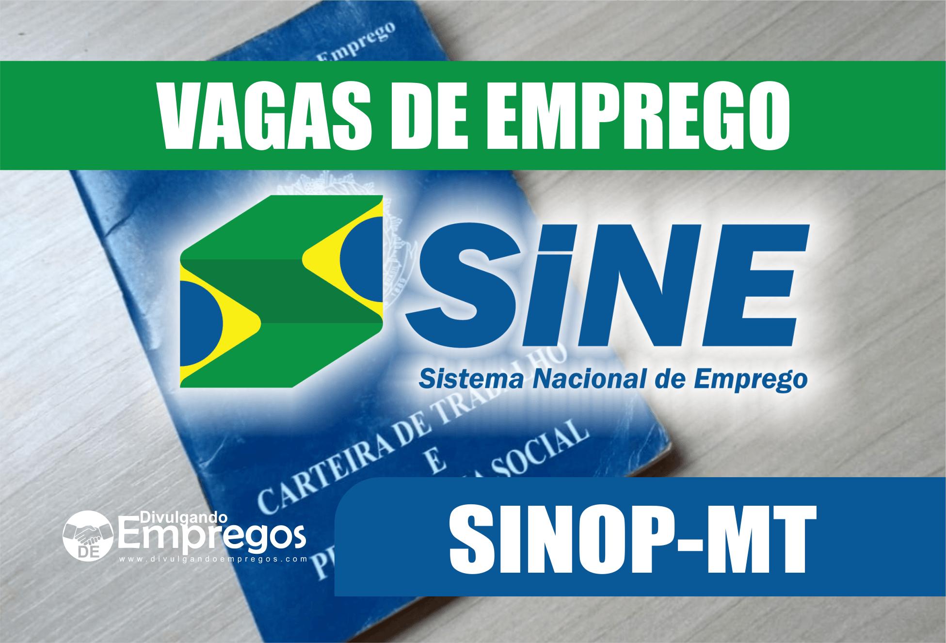 339 Vagas de Emprego no SINE de Sinop nesta quinta-feira (13/06)